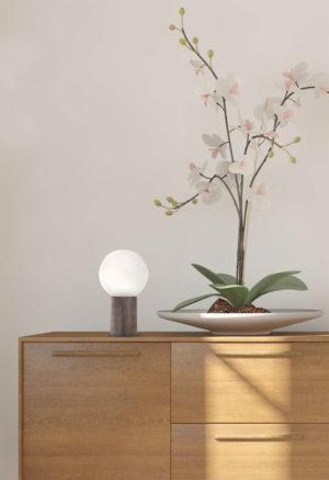 lampe concept verre edisson