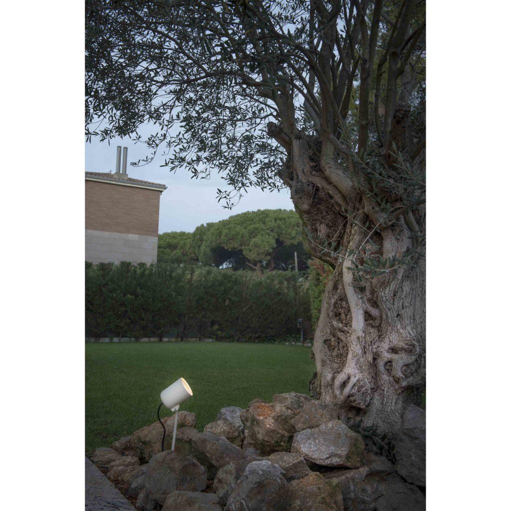 arbre eclairage